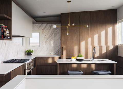 Minimalist Modern Kitchen